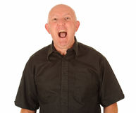 Angry bald man shouting. Half body portrait of angry middle aged man shouting, white background Royalty Free Stock Photography