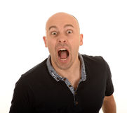 Angry bald man shouting. Half body portrait of angry middle aged man shouting, white background royalty free stock image