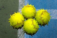 Angry balls Stock Image