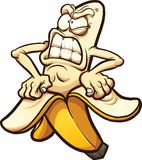 Angry banana. Taking peel of. Vector clip art illustration with simple gradients. All in a single layer stock illustration