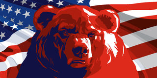 Angry Bear and American flag. Angry Bear on the background of the American flag Stock Image