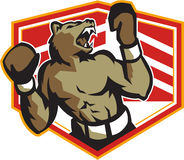 Angry Bear Boxer Boxing Retro Royalty Free Stock Image