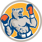 Angry Bear Boxer Gloves Circle Retro Royalty Free Stock Photography