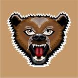 Angry Bear cartoon Royalty Free Stock Photography