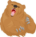 Angry bear cartoon Stock Images