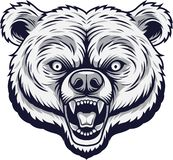 Angry bear head mascot royalty free illustration