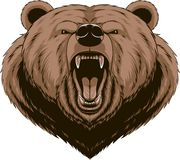 Angry bear head mascot Royalty Free Stock Photos