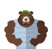 Angry bear in striped vest. Russian bear defender in a green ber Royalty Free Stock Images