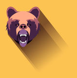 Angry bear Stock Photos