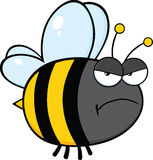 Angry Bee Cartoon Character Royalty Free Stock Images