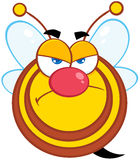 Angry Bee Cartoon Mascot Character Royalty Free Stock Image