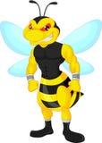 Angry bee cartoon Royalty Free Stock Photos
