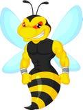 Angry bee cartoon Stock Photos