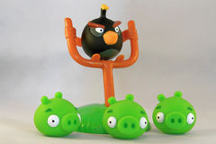 Angry birds Royalty Free Stock Image