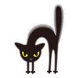 Angry black cat Royalty Free Stock Images