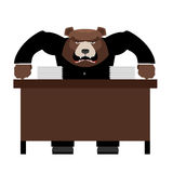 Angry Boss bear scolds. Wicked head yelling at staff. Vector ill Royalty Free Stock Photos