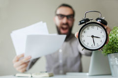 Angry boss with beard holds alarm clock and papers screaming on Royalty Free Stock Photography