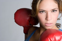 Angry Boxer Royalty Free Stock Photo