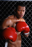 Angry Boxer. Angry looking African American man standing in front of a wire fence wearing red boxing gloves Royalty Free Stock Photo