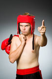 Angry boxer against Stock Image