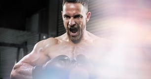 Angry boxer screaming at gym Royalty Free Stock Photos