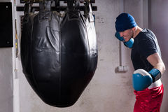 Angry boxer with stern look in a hat and boxing gloves training. With boxing punching bag in a gym Royalty Free Stock Photo