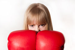 Angry boxer Stock Images
