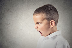Angry boy screaming. Headshot, side view Portrait Angry Child Screaming isolated grey wall background. Negative Human face Expressions, Emotions, Reaction Royalty Free Stock Photography