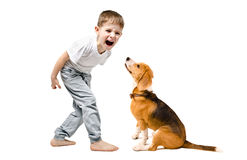 Angry boy screaming at his dog. Isolated on a white background Stock Images