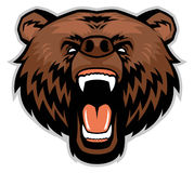 Angry brown bear head stock illustration