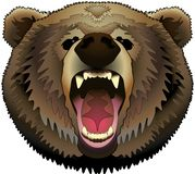 Angry brown bear without background vector illustration