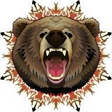 Angry Brown Bear With Background Stock Photo