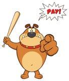 Angry Brown Bulldog Cartoon Mascot Character Holding A Bat And Pointing Stock Photos