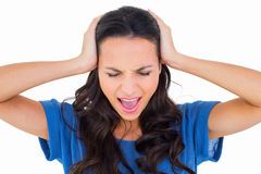 Angry brunette shouting at camera Stock Image