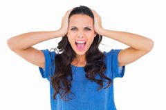 Angry brunette shouting at camera Stock Images