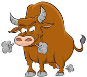Angry Bull Stock Photos