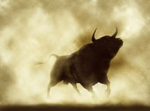 Angry bull Royalty Free Stock Photo