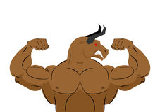 Angry bull strong athlete. Aggressive fitness animal. Wild anima Stock Photography