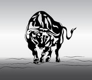 Angry bull vector Stock Image