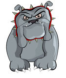 Angry BullDog Royalty Free Stock Photo