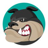 Angry bulldog face profile view vector realistic illustration. Head of grown up canin medium-sized breed with wrinkled face and evil tooth smile logo design Royalty Free Stock Images
