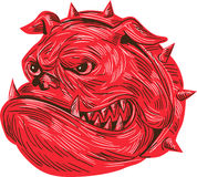 Angry Bulldog Head Drawing Royalty Free Stock Images