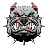 Angry bulldog head. Head of stylized furious bulldog. Vector illustration royalty free illustration