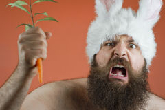 Angry Bunny Man Royalty Free Stock Photo