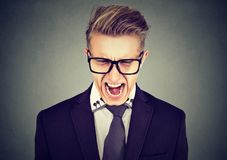 Portrait of an angry man in glasses screaming. Angry business man in glasses screaming in frustration  on gray wall background Royalty Free Stock Image