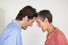 Angry business people shouting at each other. In the office Royalty Free Stock Images