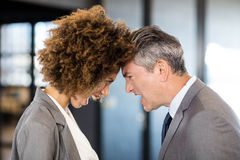 Angry businesspeople standing head to head. Close-up of angry businessman and businesswoman standing head to head Stock Image