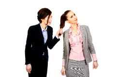 Angry businesswoman pulls her friends hair. Stock Photos