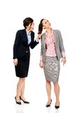 Angry businesswoman pulls her friends hair. Stock Photo