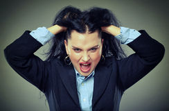 Angry businesswoman shouting Stock Image